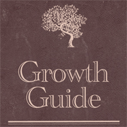 Growth Guide: It's all about strategy