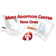 Not-for-profit Miro launches new &#039;adopt a line of code&#039; business model