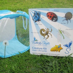 Creature Kit for Insect Life Cycles (SMART 100)