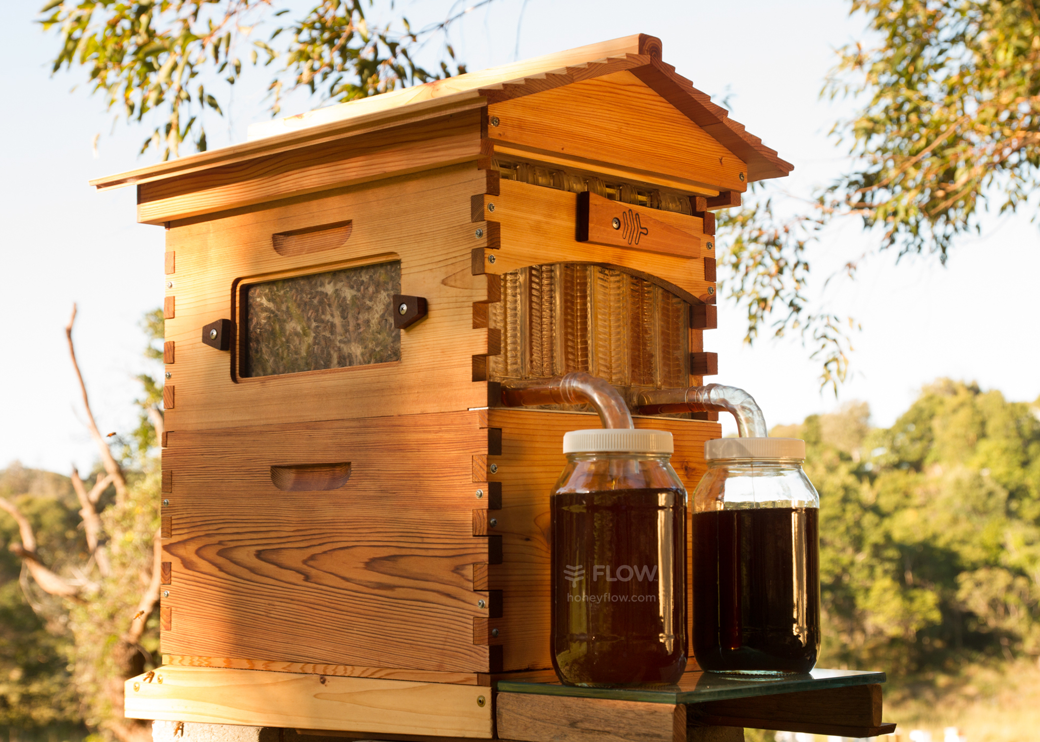 This world first beehive tech lets you tap the honey for Hive homes