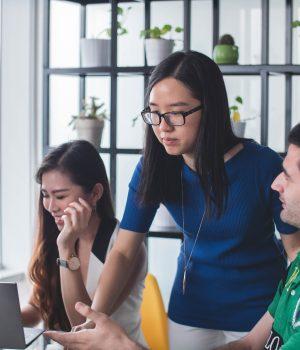 How to launch your startup: Accelerators vs. Incubators - Embroker