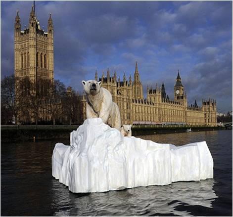 pr-stunts-polar-bear-on-thames