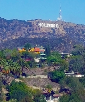 This is the actual view from the new IntelligenceBank LA office
